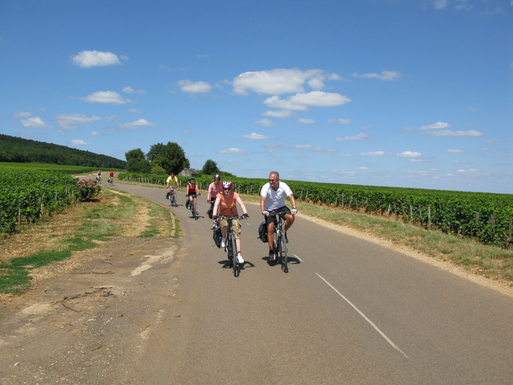 Cycling in the vineyards, Burgundy