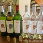 A selection of wines from Chateau Puy Servain