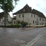 Sheep drive through Loubressac