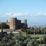 The Citadelle in Montalcino
