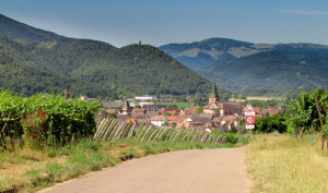 View of Ingersheim on the 'Route de Vin'