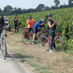 Brazilians-and-Americans-stealing-grapes-near-Nimes-cPatrick-Hudgell-Photography.jpg.jpg